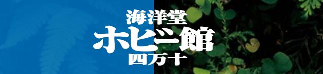 SnapCrab_NoName_2015-10-18_13-12-8_No-00